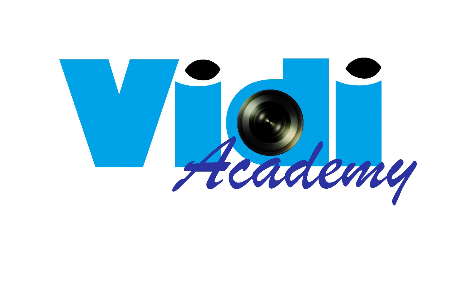 Vidi Academy
